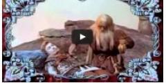 Промо ролик о компании Сибирь-Цео (фильтры для воды Арго)