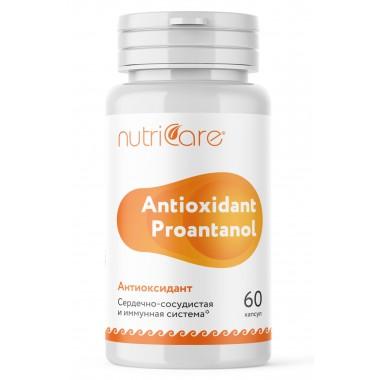 Антиоксидант (Antioxidant Proantonol): описание, отзывы