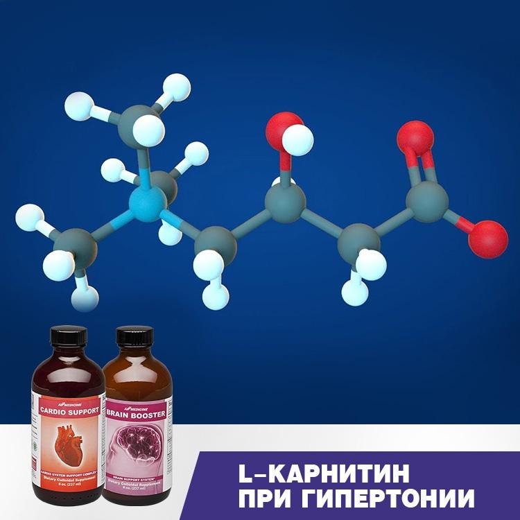 L-карнитин при гипертонии