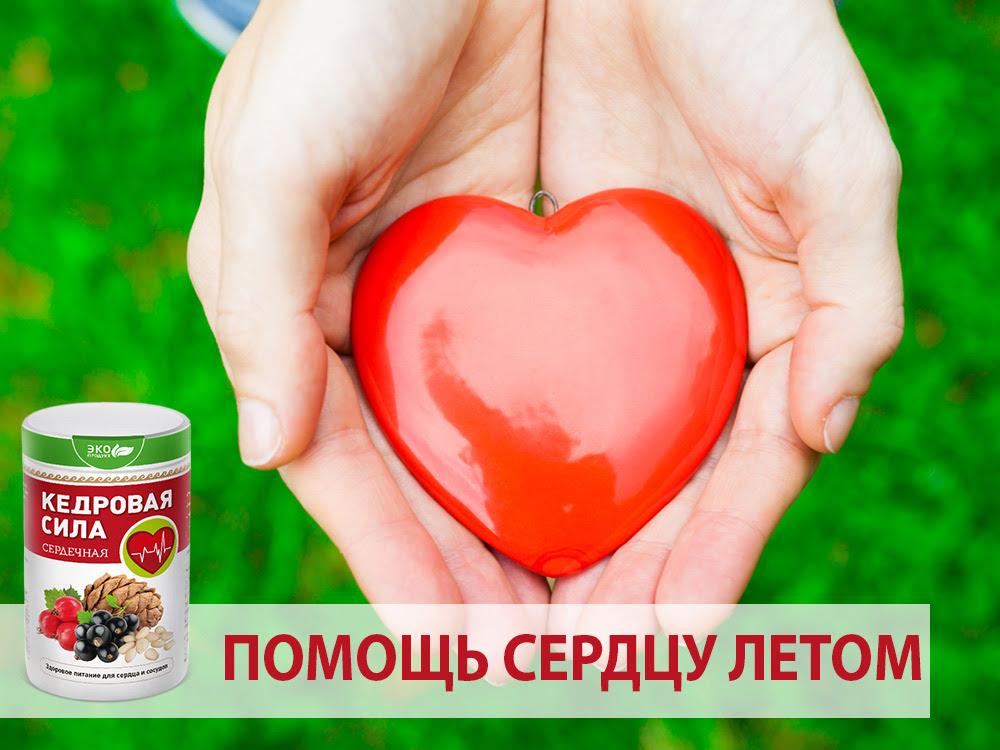 Кедровая сила «Сердечная»: помощь сердцу летом