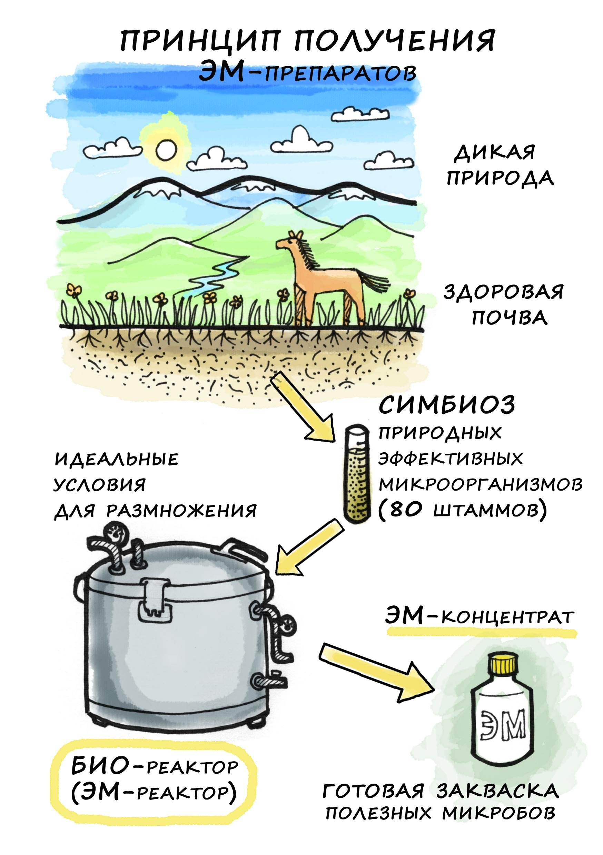 Как делается усовершенствованный минеральный концентрат ЭМИКС