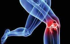 Арго суставные заболеван остеоартроз боли в костях и суставах