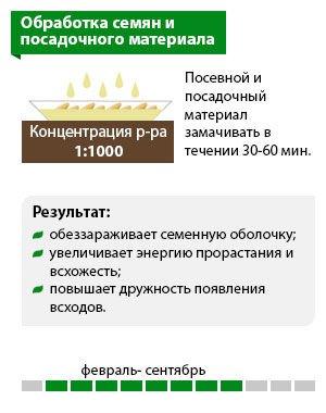 Схема «Обработка семян и посадочного материала»