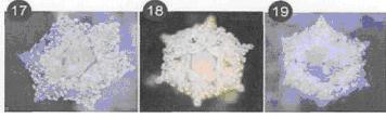 Кристаллы воды, свойства воды, энергоинформационная структура.