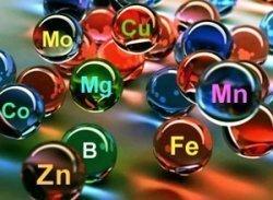 Минералы, микро- и макроэлементы